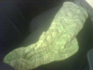 A sock! A Cat Bordhi sock!